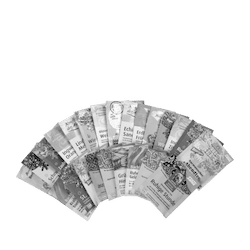 Salus® Tee Adventskalender