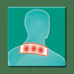 Salus® Gelenk-Aktiv Wärme-Pflaster XL