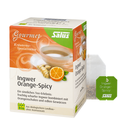 Salus® Gourmet Ingwer Orange-Spicy