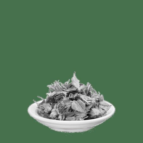 Salus® Griechischer Bergtee