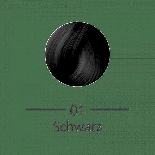 "SANOTINT® Haarfarbe Nr. 01 ""Schwarz"""