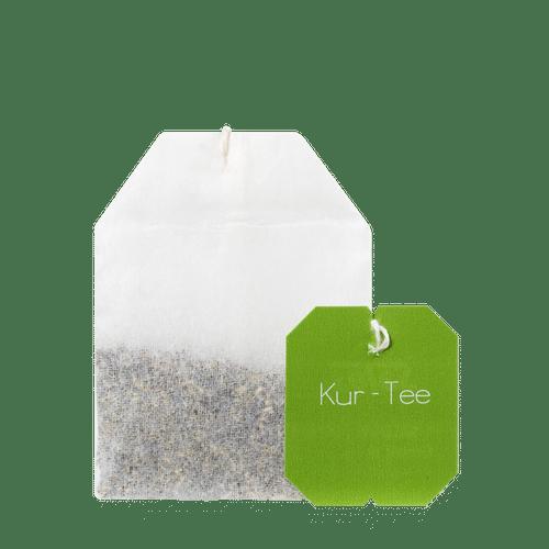 Salus® Kräutertee-Spezialitäten aus aller Welt Kur-Tee