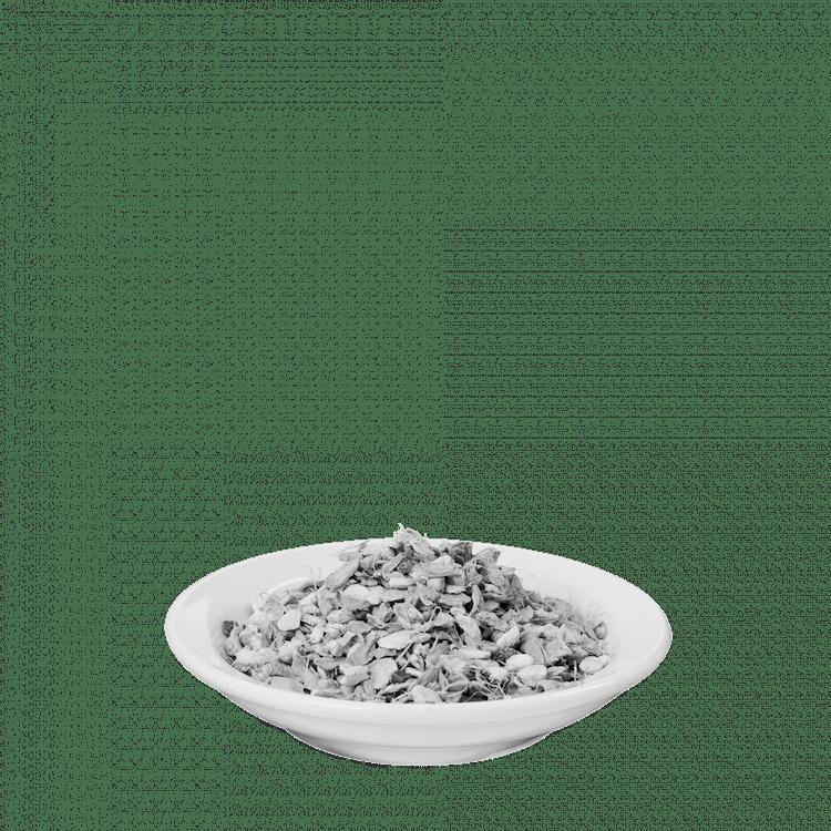 Salus® Ingwer Tee